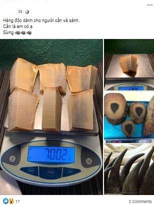 Việt Nam xử lý nghiêm đối với tội phạm buôn bán sừng tê giác ảnh 2