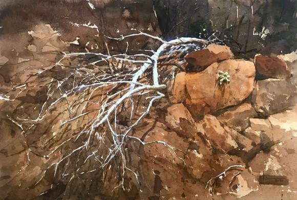 Côn Đảo thiêng liêng, sống động trong tranh màu nước  ảnh 3