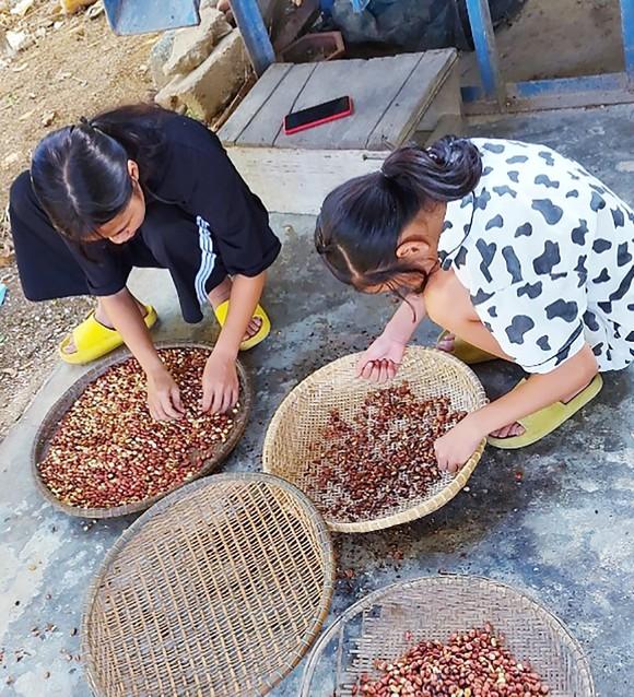 TPHCM tiếp nhận 5 tấn lương thực, thực phẩm từ người dân Huế ảnh 8