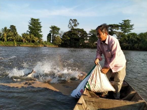 Bán nhà máy thủy sản ở An Giang - Nông dân nguy cơ mất trắng tiền nợ cá ảnh 1