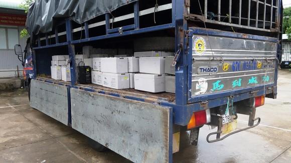 Bắt giữ vụ vận chuyển 28 tấn chất thải nguy hại ở An Giang ảnh 2