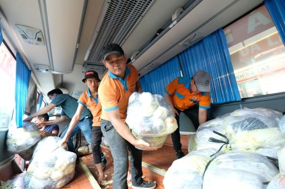 Phương Trang hỗ trợ 1.000 tấn rau củ quả cho người dân TPHCM ảnh 1