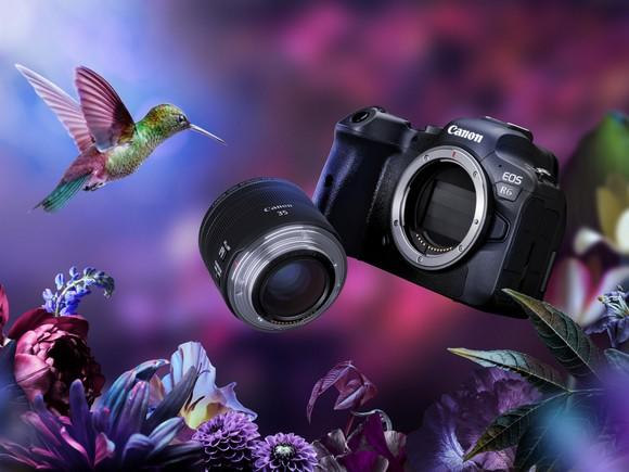 Canon ra mắt máy ảnh EOS R5, R6 và loạt ống kính mới  ảnh 5