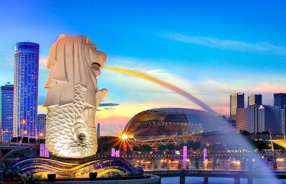 Amazon đầu tư dự án năng lượng tái tạo 'khủng' ở Singapore ảnh 1