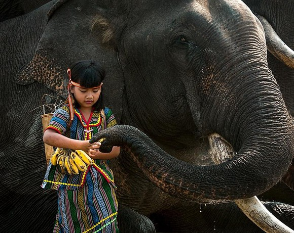 Đẹp tới say lòng với những khung hình trong Khám phá Việt Nam  ảnh 4