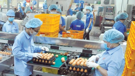 HCMC focuses on preparing goods for Tet holidays
