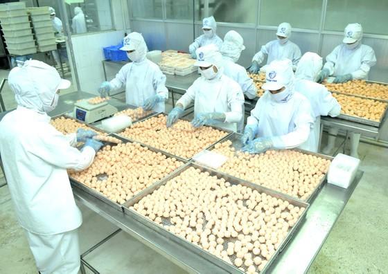 Food processing at a Korean company in Ho Chi Minh City. (Photo: SGGP)