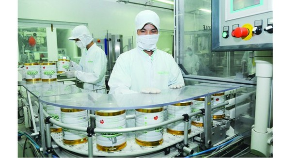 The production of dairy products at Nutifood. (Photo: SGGP)