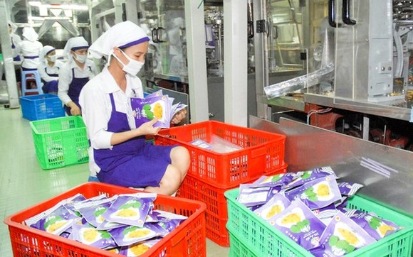Processing jackfruit for export at Vinamit Company in Binh Duong Province. (Photo: SGGP)