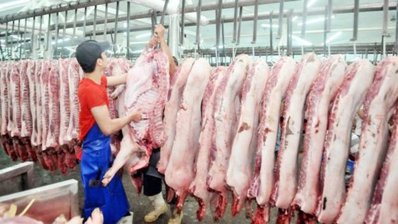 Enterprises participated in the market stabilization program are allowed to increase their selling prices of pork by VND6,000-VND15,000 per kilogram. (Photo: SGGP)
