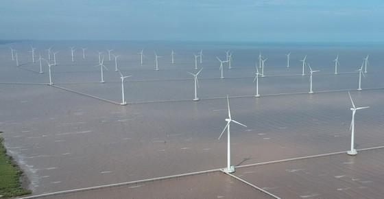 Wind power in Bac Lieu Province. (Photo: SGGP)