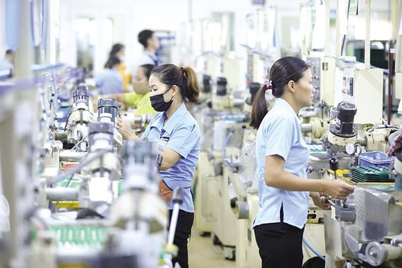 The processing and manufacturing industry rose by 10.4 percent, contributing 8 percentage points to the general growth. (Photo: SGGP)