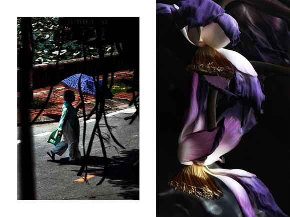 Triển lãm 'Chân dung phụ nữ' của 15 nghệ sĩ nhiếp ảnh trẻ đến từ TPHCM và Huế ảnh 2