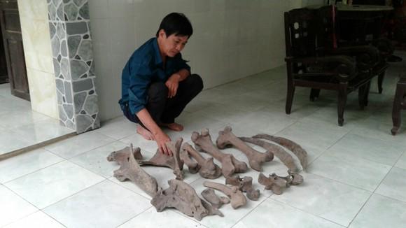 Người dân Bến Tre phát hiện nhiều mảnh xương lạ dưới mương nước ảnh 1
