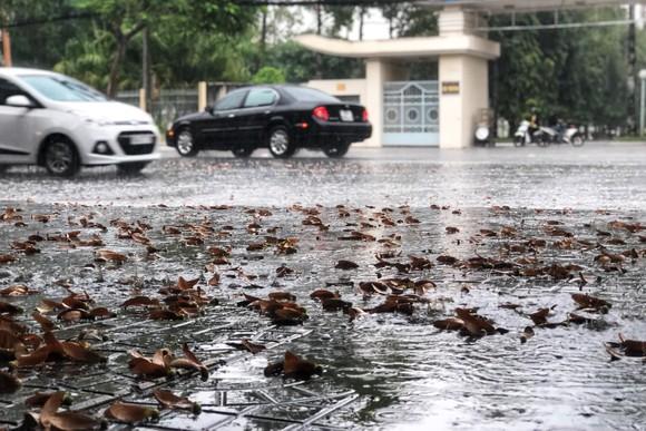 Xuất hiện mưa 'vàng' giải nhiệt cho ĐBSCL ảnh 3