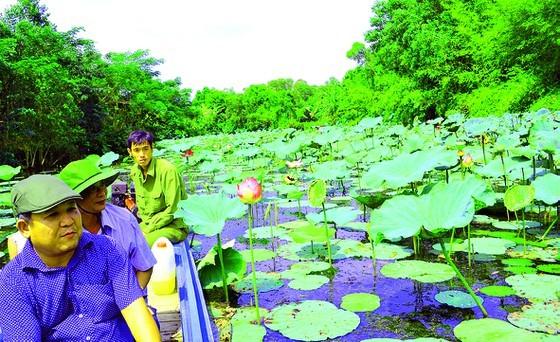 Enjoy fresh air in Lung Ngoc Hoang Nature Reserve ảnh 2