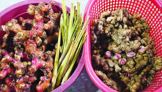 Vu Dai villagers start braising traditional fish for Tet holiday ảnh 2