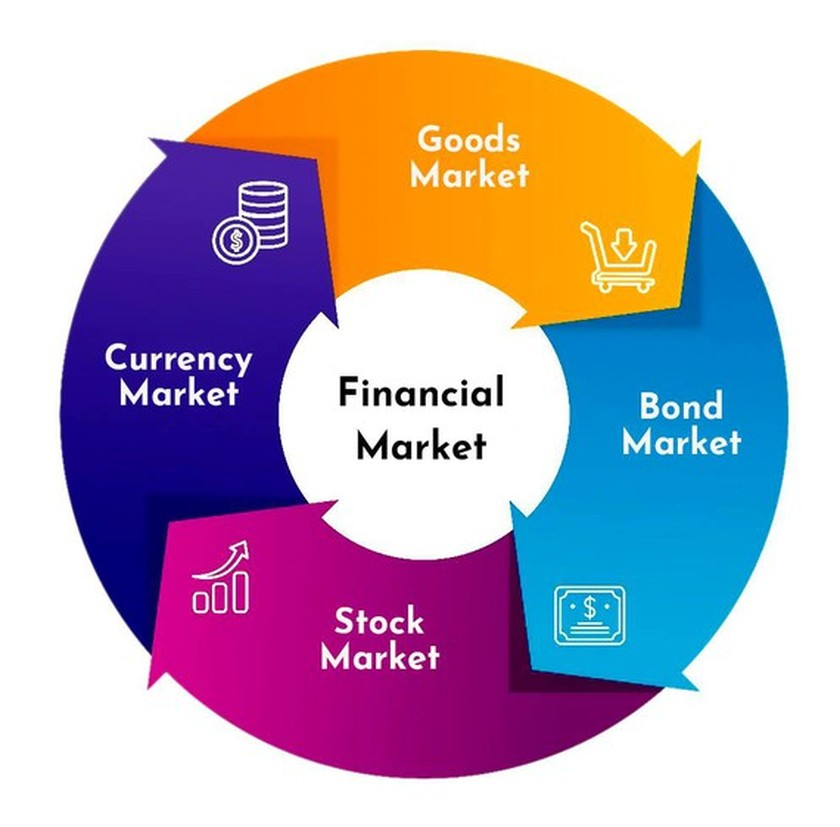 Bolster stock markets to withstand external shocks ảnh 1