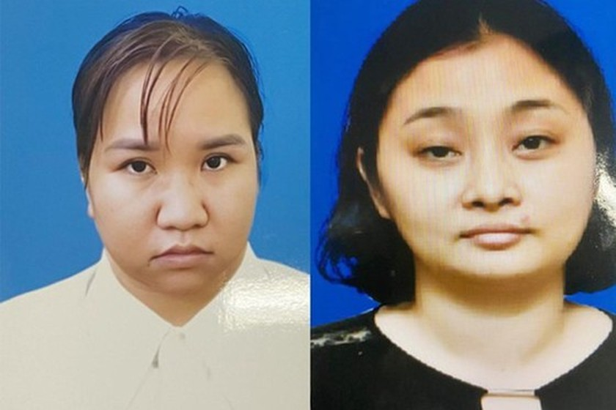 Obstetrician nabbed for involving in illegal surrogacy ring in Hanoi ảnh 1