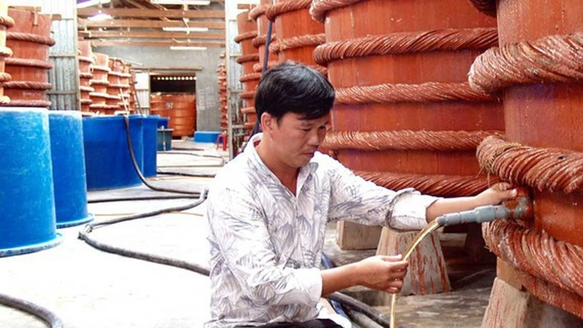Phu Quoc fish sauce making becomes national intangible cultural heritage ảnh 1