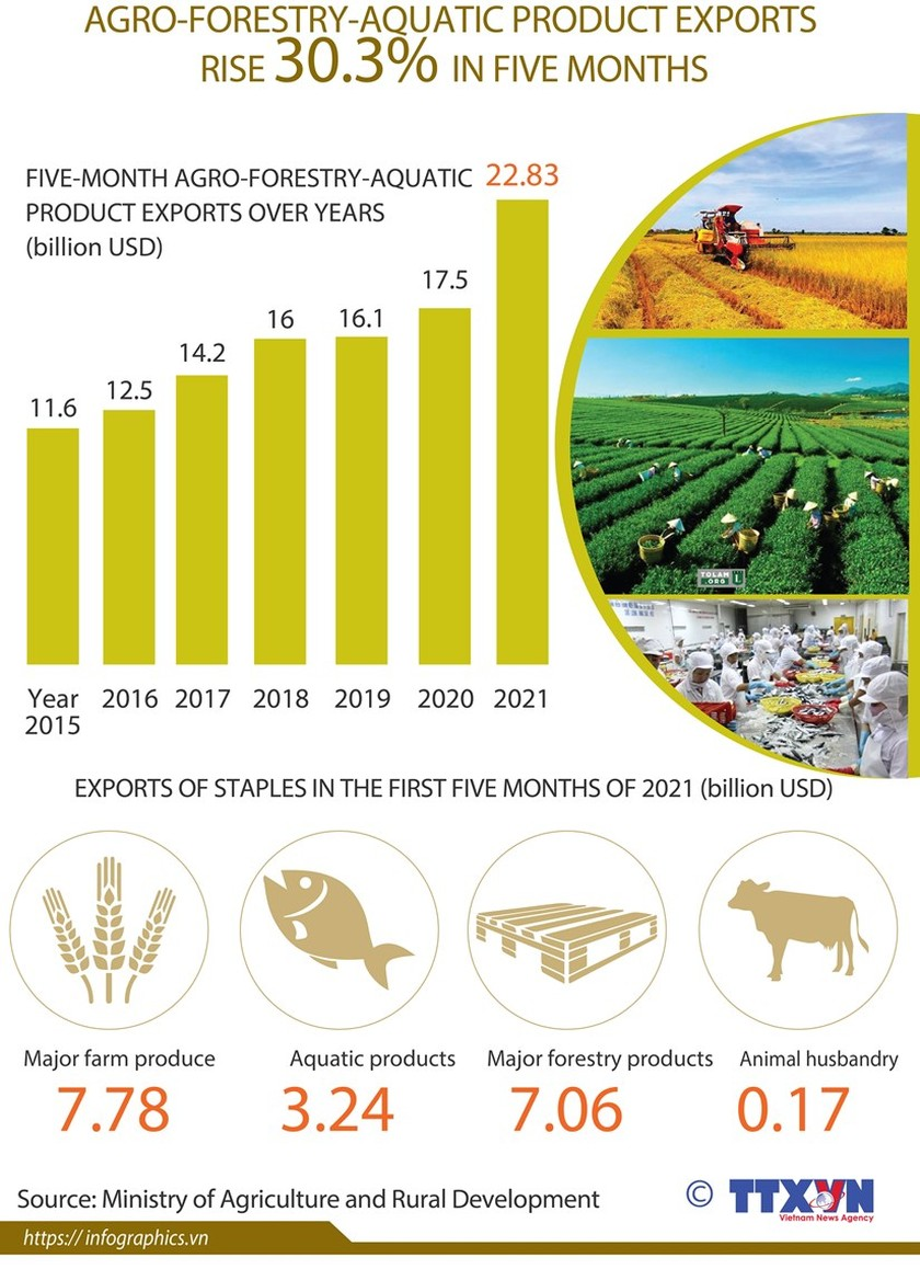 Agro-forestry-aquatic product exports rise over 30 percent ảnh 1