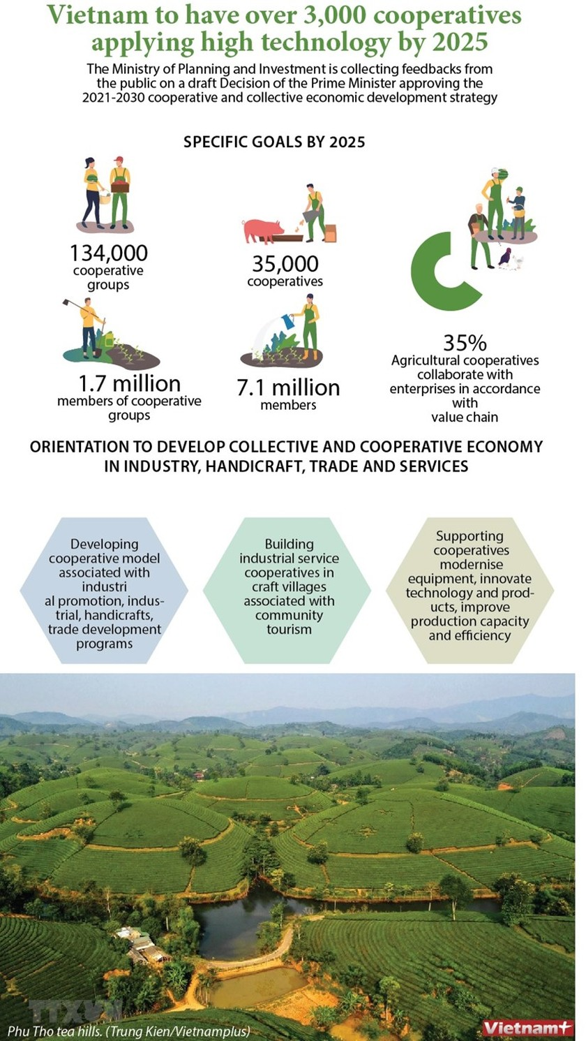 Vietnam to have over 3,000 cooperatives applying high technology by 2025 ảnh 1
