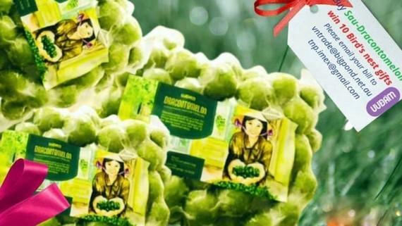Vietnam exports 22 tons of frozen Indochina Dragonplum fruit to Australia ảnh 1