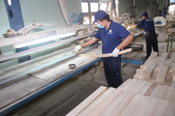 Vietnam's wood industry maintains growth momentum despite Covid-19 ảnh 1