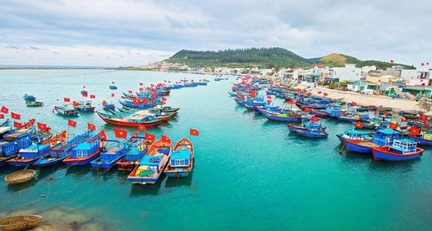 Tasks assigned to put an end to IUU fishing by year's end ảnh 1