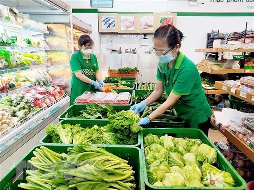 Vietnam is Russia's sixth largest supplier of processed fruits, vegetables ảnh 1