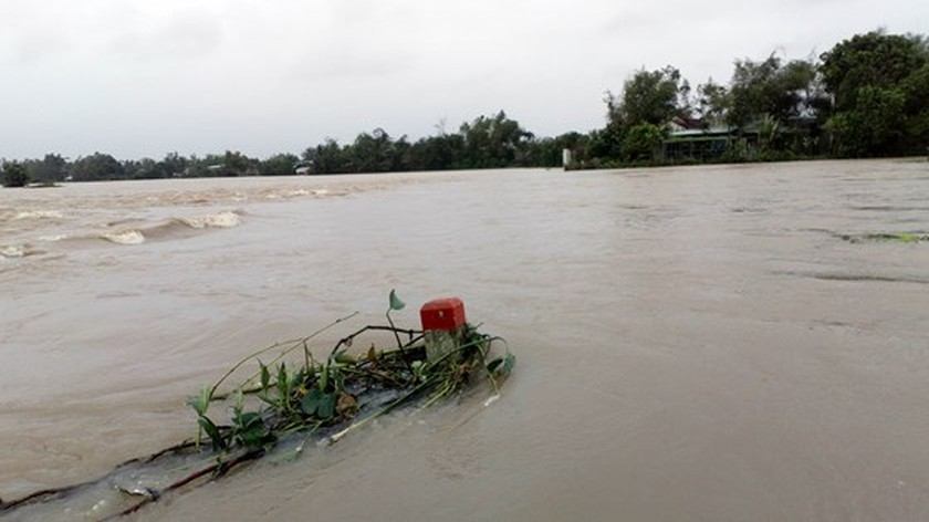 Nearly 29,000 houses moved due to huge flooding  ảnh 11