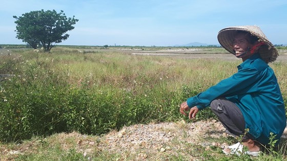 Ho Do salt field is deserted ảnh 11
