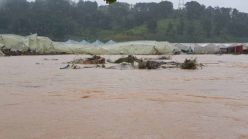 More than 1,350 houses inundated due to tropical downpours ảnh 10