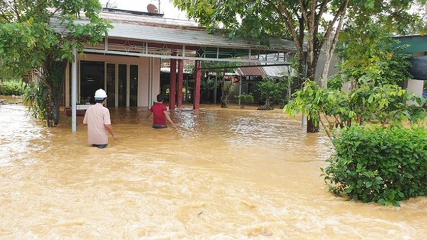 More than 1,350 houses inundated due to tropical downpours ảnh 5