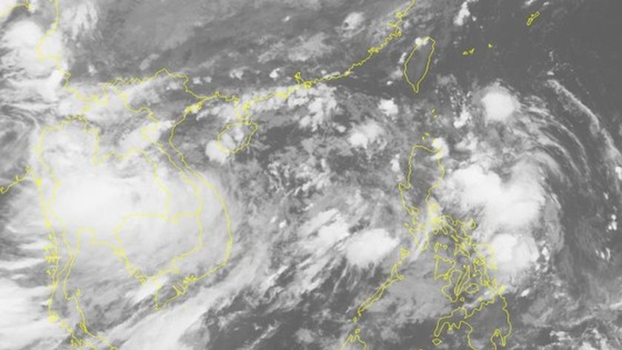 Typhoon Podul turns into tropical depression  ảnh 1