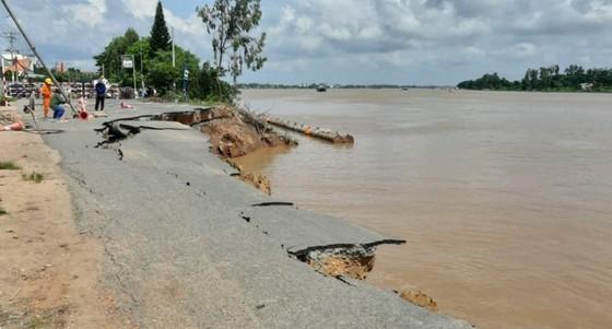 Peak of flood season in Mekong Delta to arrive in next few days ảnh 1