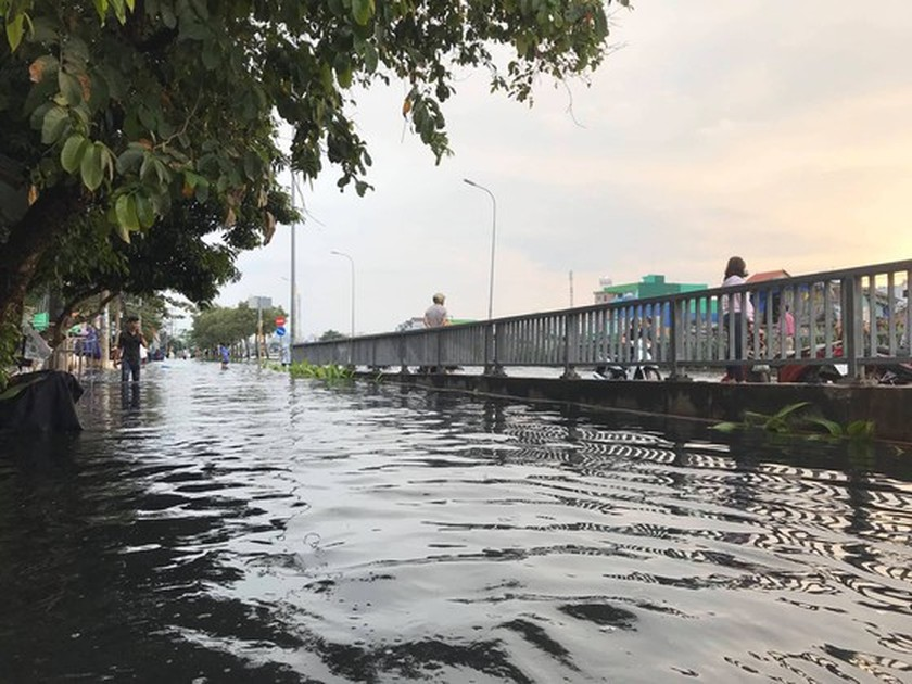 Nearly 200 people urgently overcome dike incident in district 8  ảnh 6