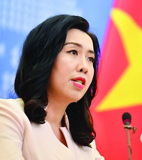 Confident Vietnam in 2020: FM spokeswoman ảnh 1