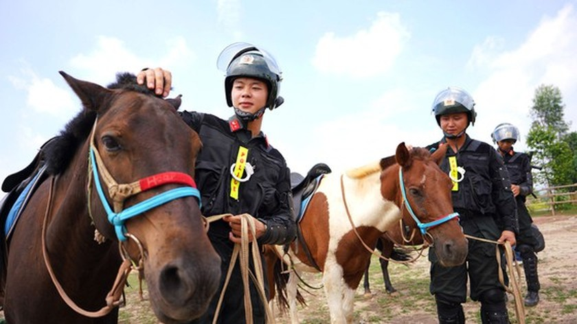 Horse-training day of Cavalry soldiers at Ba Van horse farm ảnh 2