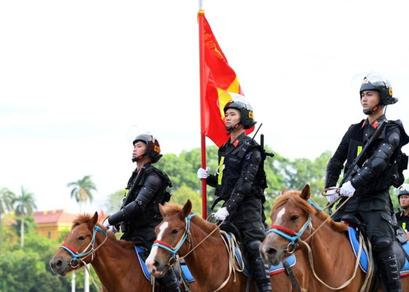Horse-training day of Cavalry soldiers at Ba Van horse farm ảnh 1