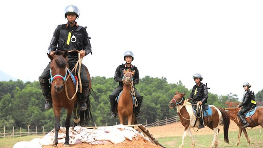 Horse-training day of Cavalry soldiers at Ba Van horse farm ảnh 4