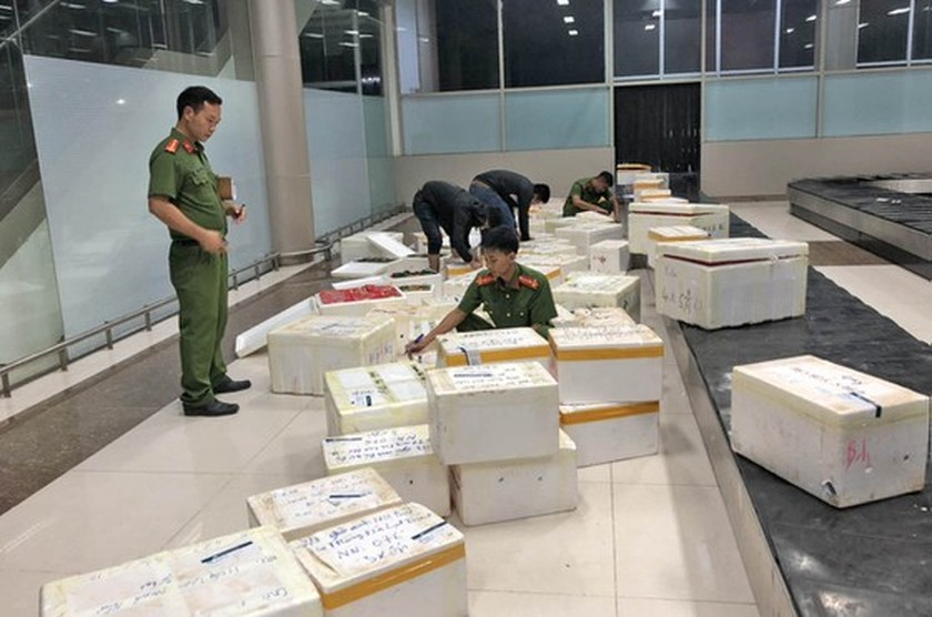 Lam Dong seizes 600 boxes of smuggled fresh strawberries via air-route ảnh 1