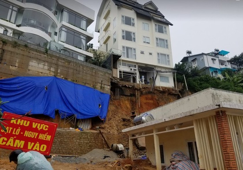 Downpour causes uprooted trees, mountain pass landslide in Da Lat City ảnh 6