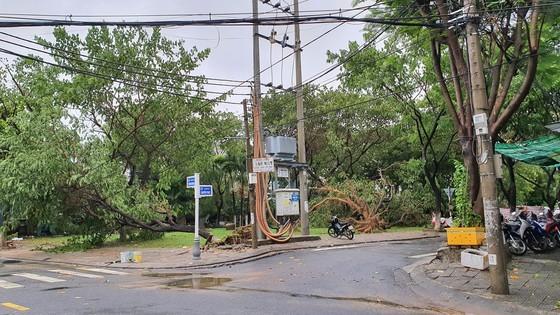 Downpour, storm-force wind rush down Central provinces  ảnh 8