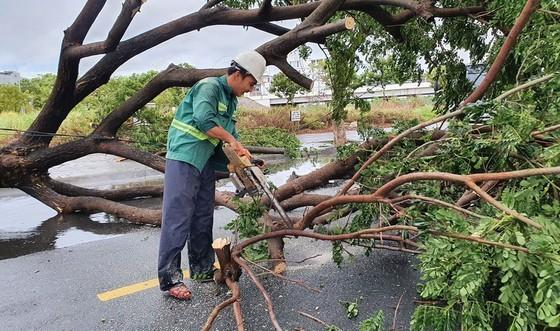 Downpour, storm-force wind rush down Central provinces  ảnh 1