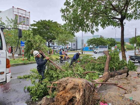 Downpour, storm-force wind rush down Central provinces  ảnh 2