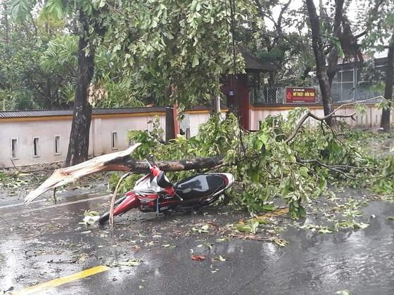 Downpour, storm-force wind rush down Central provinces  ảnh 5