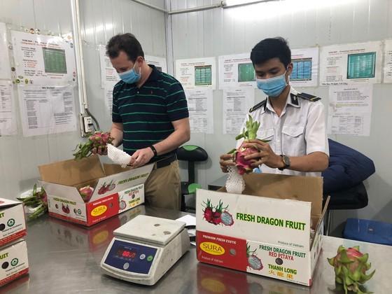 Vietnam ready to resume fresh fruit export to US market ảnh 2