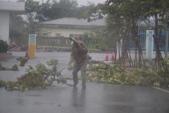 Storm Molave making landfall in provinces from Da Nang to Phu Yen ảnh 1