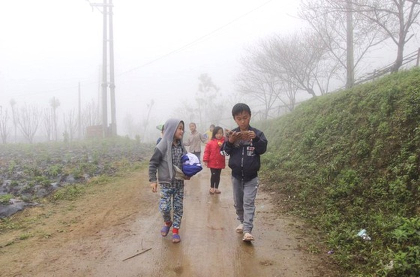 Northern people contrive to live under current gelid cold  ảnh 4